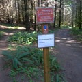 Most intersections are well marked.- L.L. Stub Stewart State Park Mountain Bike Trails: Freeride + XC Loop