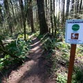 Start of Greenhorn Flow.- L.L. Stub Stewart State Park Mountain Bike Trails: Freeride + XC Loop