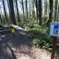 Start of Drip Torch.- L.L. Stub Stewart State Park Mountain Bike Trails: Freeride + XC Loop