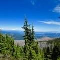 View of Mount Adams from the Vista Ridge Trail.- Cairn Basin + McNeil Point via the Vista Ridge Trail