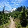 Vista Ridge Trail.- Cairn Basin + McNeil Point via the Vista Ridge Trail