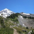 Mount Hood from the trail.- Cairn Basin + McNeil Point via the Vista Ridge Trail