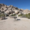 View up into Rattlesnake Canyon from the Indian Cove Day Use Picnic Area.- Indian Cove Day Use Picnic Area