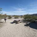 Typical campsite at Indian Cove Campground.- Indian Cove Campground
