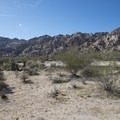 View east toward Rattlesnake Canyon from Indian Cove Campground.- Indian Cove Campground