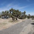 Black Rock Canyon Campground.- Black Rock Canyon Campground