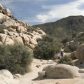 Looking back toward the trailhead.- Barker Dam Trail