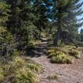 The former trailhead.- Battle Ax Mountain