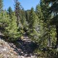 Battle Ax Mountain Trail.- Battle Ax Mountain