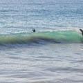 Surfing San Clemente's City Beach - San Clemente City Beach + Pier