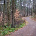 A small rise in the trail follows shortly after the register.- Lampson Falls