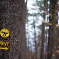 Primitive camping and an outhouse can be found just beyond the sandy beach.- Lampson Falls