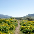 Top of Marsh Hill.- Memaloose Hills Trail