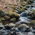 A small sidestream along the trail.- Hope Falls/Tenant Creek Falls