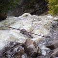 Auger Falls from above.- Auger Falls