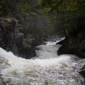 Tumultuous water downstream from Auger Falls.- Auger Falls