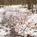 The trail can be quite muddy in places.- Mills Riverside Park
