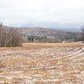 The off-leash dog area is in an open field.- Mills Riverside Park