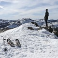 The peak of Donner Ridge with panoramic views of the Sierras.- Donner Ridge Snowshoe via Glacier Way Trailhead