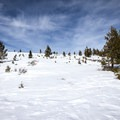 The final stretch of the trail is a climb toward the peak.- Donner Ridge Snowshoe via Glacier Way Trailhead