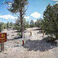 A trail leads from the campground to the ichthyosaur fossil shelter.- Berlin-Ichthyosaur State Park Campground