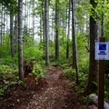 Sign mentioning the trail's difficulty rating.- Summit Ridge Mountain Bike Trails