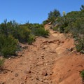 A steep portion of the trail.- Canyon Oak Trail