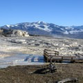 The boardwalks make it easy to get around the hot springs.- Mammoth Hot Springs