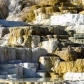 Palette Spring in the Mammoth Hot Springs complex.- Mammoth Hot Springs