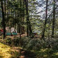 Lakeside campsite at Lake Dale Resort.- San Juan Island: Lake Dale Resort + Campground