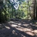 Typical campsite at Lake Dale Resort.- San Juan Island: Lake Dale Resort + Campground