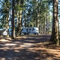 RV camping spots at the resort.- San Juan Island: Lake Dale Resort + Campground