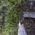- BC Falls Hike