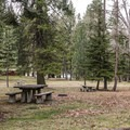 Plenty of picnic tables and room to play.- Wallowa Lake State Park