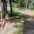 Campsites closest to the lake access.- Wallowa Lake State Park Campground