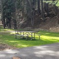 Campsites are easily accessible.- Wallowa Lake State Park Campground