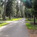 This campground is large and the sites are often close together.- Wallowa Lake State Park Campground