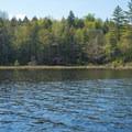 Early views of Beaver Lake.- Beaver River Canoe Trail