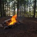 A primitive campsite on an island hosts a stone firepit.- Beaver River Canoe Trail