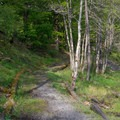 The end of the portage between Soft Maple and Effley Falls Reservoir.- Beaver River Canoe Trail