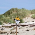 Area closed for snowy plover habitat.- Carter Lake Campground