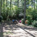 Campsite in Carter Lake Campground.- Carter Lake Campground