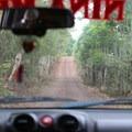 The road to Manzanita Ranch.- Manzanita Ranch
