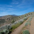 On the trail to Yellow Butte.- Yellow Butte