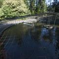 Fish Hatchery in Whatcom Falls Park.- Whatcom Falls Park