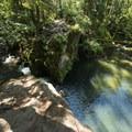 Whatcom Creek swimming hole downstream of Whatcom Falls.- Whatcom Falls Park