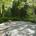 Typical campsite at Lakeside Campground.- Lakeside (Deer Lake) Campground