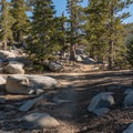 Marion Mountain Trail, Mount San Jacinto State Park.- San Jacinto Peak via Marion Mountain Trail