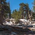 Little Round Valley.- San Jacinto Peak via Marion Mountain Trail