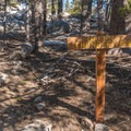 One of several primitive campgrounds at Little Round Valley.- San Jacinto Peak via Marion Mountain Trail